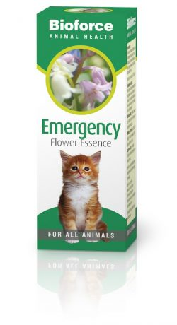 Bioforce Pet Care Emergency Essence 30ml
