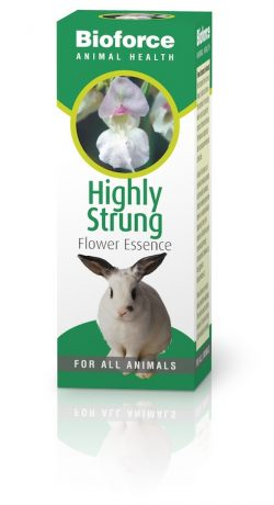 Bioforce Pet Care Highly Strung Essence 30ml