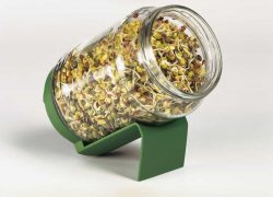 Bioforce Super Foods BioSnacky Germinator Jar small