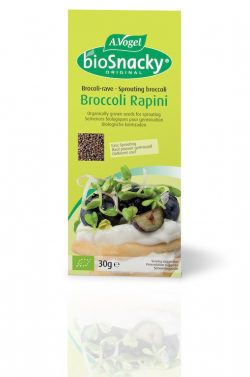 A Vogel Biosnacky broccoli Seeds